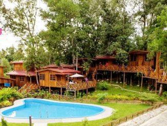 Borneo Tree House